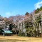 地域:栃木県・小山市に住む・・・